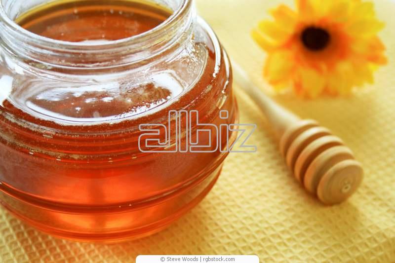شراء Honey