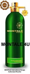 Montale Perfume International design