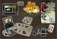 Golden king 500