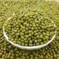 Green mung